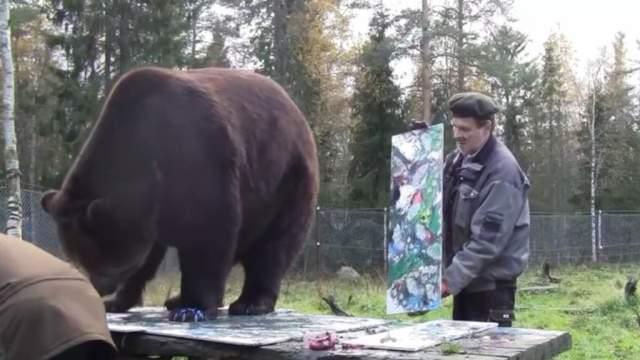 В Финляндии появился медведь-художник