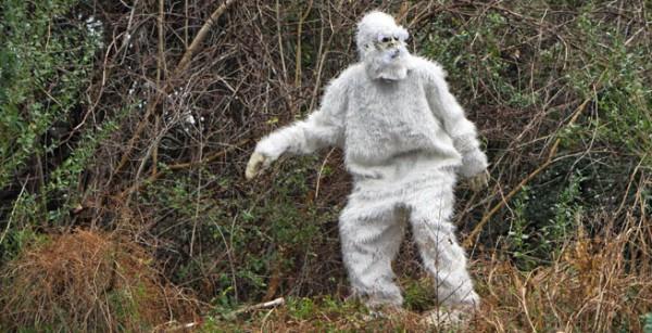 Жительница Америки встретила снежного человека